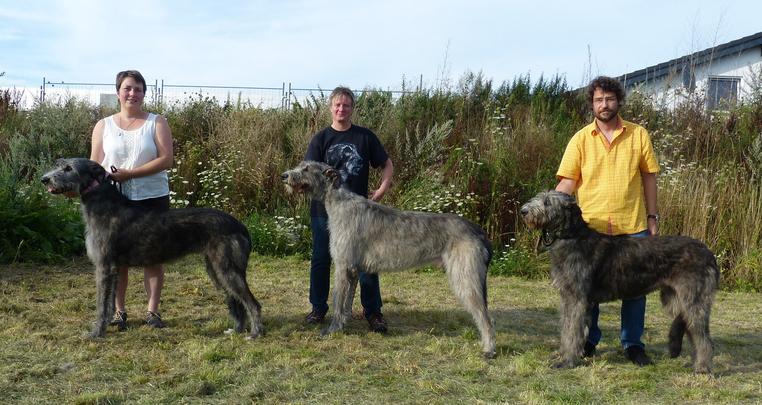 G-Wurf, Foto vom 3.8.15 - Gina, Geronimo und Gaby vom Alpetal