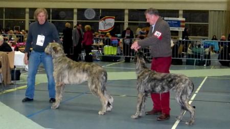 Hubert vom Alpetal & Pitlochry's Sally