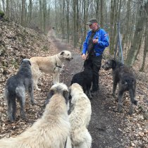 Eva und Timmy, wer 4 Wölfe hat, kann sich auch 6 kümmern